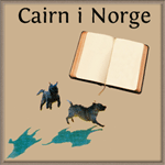 Cairn-historie